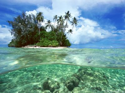 Split View, Solomon Islands