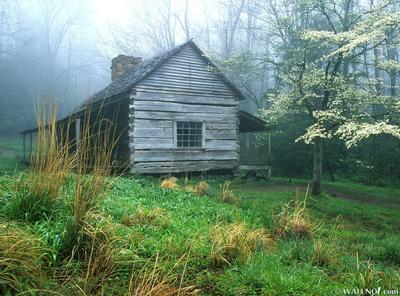 Peaceful Morning, Noah  Bud  Ogles Place, Smoky Mtns., Tennessee