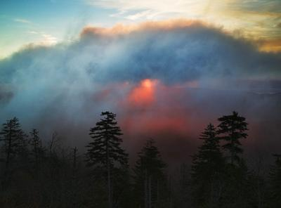 Foggy Sunrise From Clingmans Dome, Great Smoky Mountains, Tennessee
